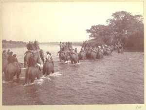 Hunting party on elephants fording a river